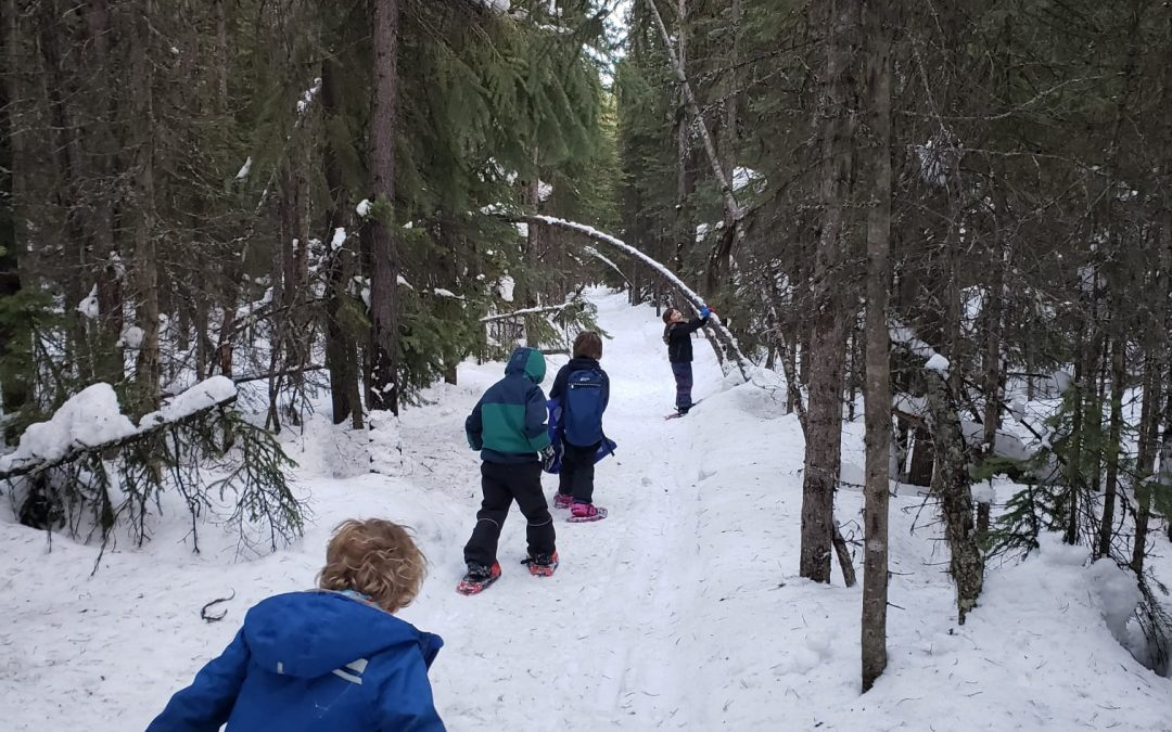 Update on trail conditions