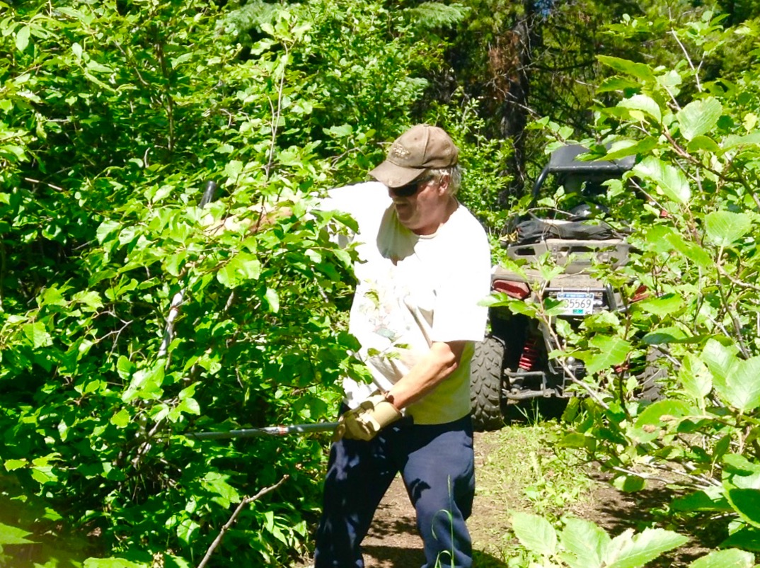 Our number one labour intensive job, the yearly brush clearing tag alders and willows.